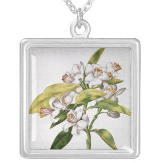Orange tree flower, from 'La Guirlande de Julie' Silver Plated Necklace