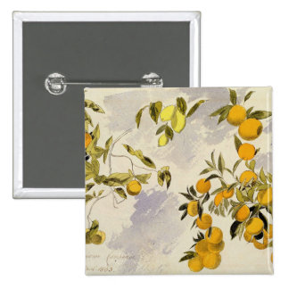 Orange Trees, 1863 (w/c, pen and ink over graphite 15 Cm Square Badge