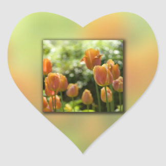 Orange Tulip Flowers Sticker