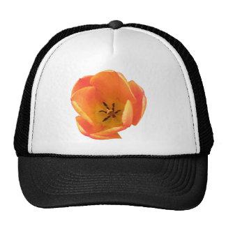 Orange Tulip Hat