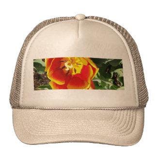 Orange Tulip Trucker Hat