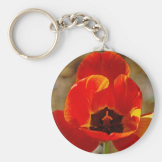 Orange Tulip... Basic Round Button Key Ring