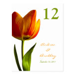 Orange Tulip Table Number Card Post Cards