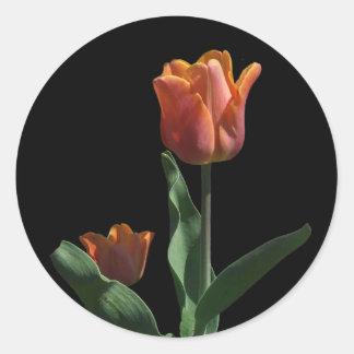 Orange Tulips Classic Round Sticker