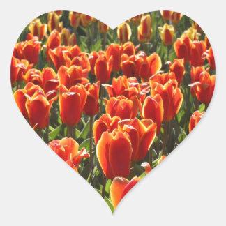 Orange Tulips Heart Sticker