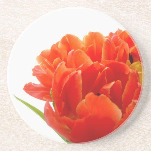 Orange Tulips Sandstone Coaster