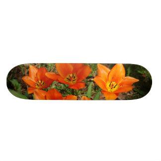 Orange Tulips Skateboard