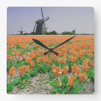 Orange Tulips Windmills Landscape Wallclock