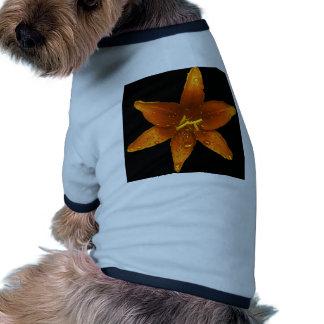 Orange Vibrant Lily Ringer Dog Shirt