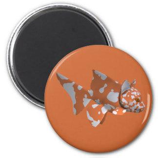 Orange-White Spotted Catfish 6 Cm Round Magnet