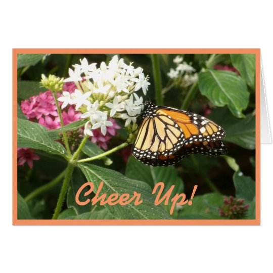 Orange Yellow Butterfly Pink White Flowers Card