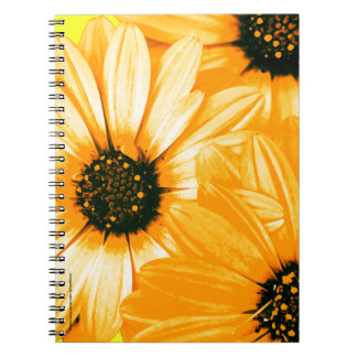 Orange/Yellow Daisies - Spiral Notebook