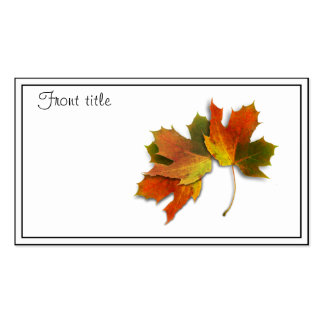 Orange & Yellow  Fall Leaves Double-Sided Standard Business Cards (Pack Of 100)