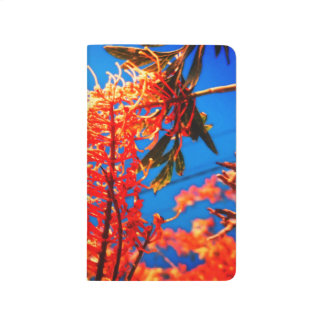 Orange Yellow Flowers Tree Sky Notebook
