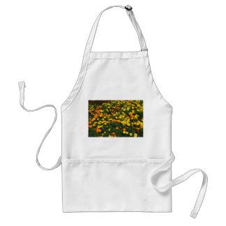 orange yellow marigold flowers field floral design apron