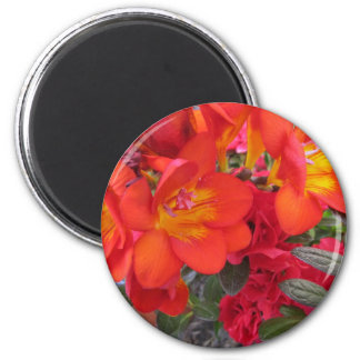 orange yellow red freesias 6 cm round magnet