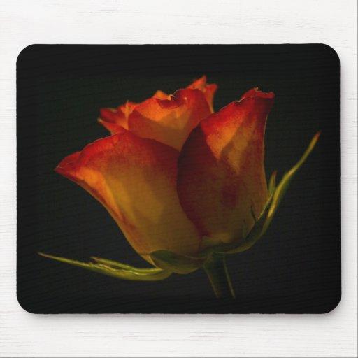 Orange & Yellow Rose Mousepads