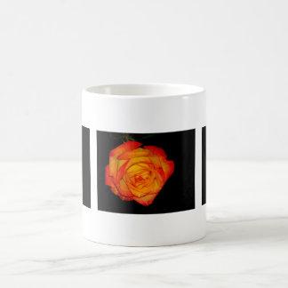 Orange-Yellow Roses Basic White Mug