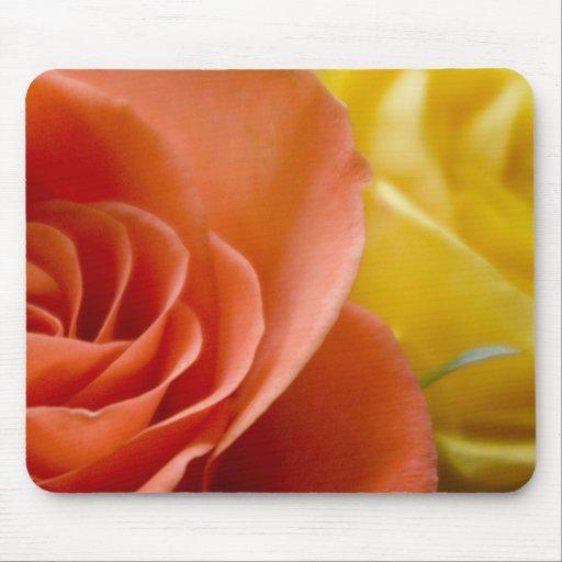 Orange & Yellow Roses Mousepads