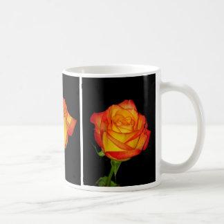Orange-Yellow Roses Mugs