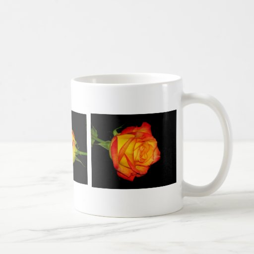 Orange-Yellow Roses Coffee Mugs