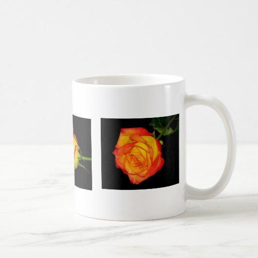 Orange-Yellow Roses Coffee Mug