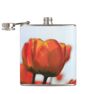 Orange yellow tulips by Thespringgarden Hip Flask
