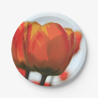 Orange yellow tulips by Thespringgarden Paper Plate