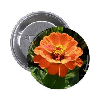 Orange Zinnia Button