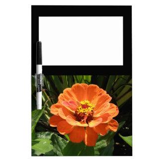 Orange Zinnia Memo Board