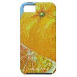 Oranges iPhone 5 Covers