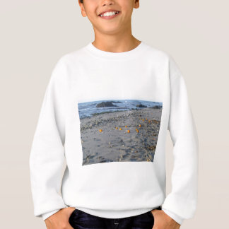 Oranges on a Spanish beach Sweatshirt