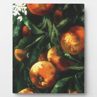 Oranges Plaque