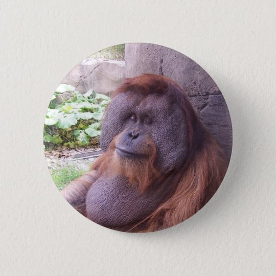 Orangutan 6 Cm Round Badge
