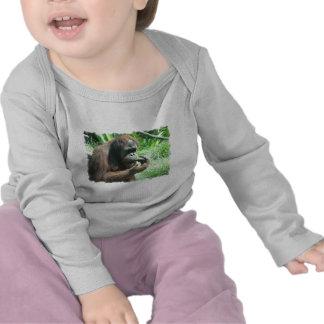 Orangutan Ape Infant T-Shirt