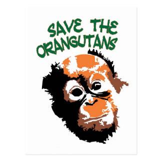 Orangutan Art Post Cards