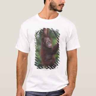 Orangutan Baby Climbing Liana T-Shirt