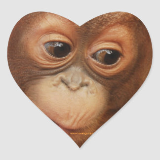 Orangutan Baby Face Heart Sticker