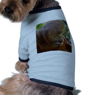 "Orangutan ""Bad Hair Day"" Dog Tshirt"