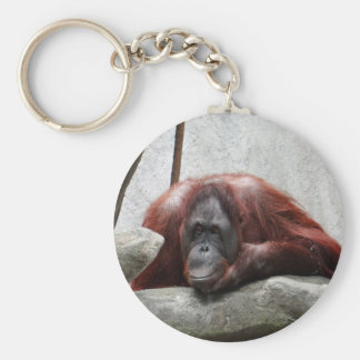 Orangutan Basic Round Button Key Ring