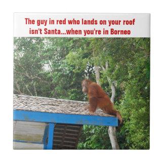 Orangutan Christmas Borneo Tile