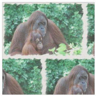 Orangutan Fabric