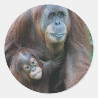 Orangutan Family  Stickers