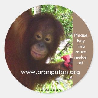 Orangutan goes Ape for Watermelon Classic Round Sticker