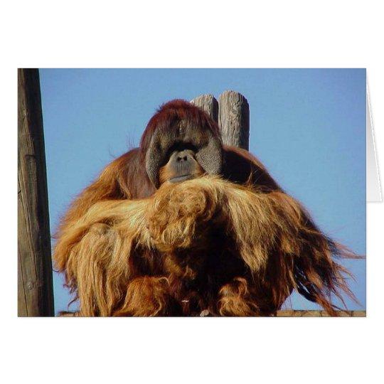 Orangutan Happy Birthday Template Card