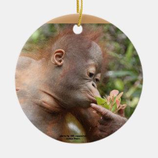 Orangutan Holiday Treats Round Ceramic Decoration