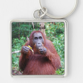 Orangutan in Borneo Rainforest Keychain