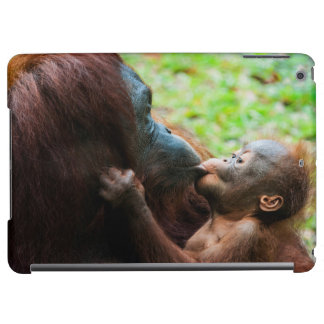 Orangutan mother and baby cover for iPad air
