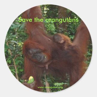 Orangutan Mother and Baby in Natural Habitat Classic Round Sticker