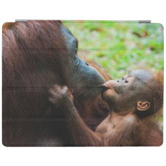 Orangutan mother and baby iPad cover